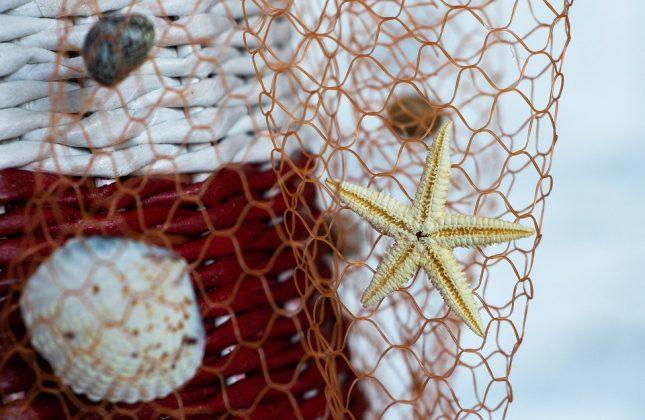 προταση διακόσμησης με αστερίες, κοχύλια και δίχτυ