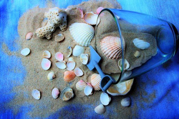 Διάφορα κοχύλια μαζί με άμμο