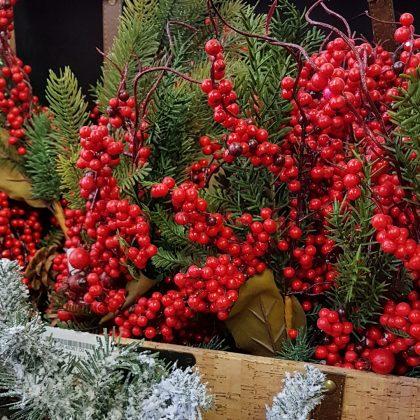 κόκκινα χριστουγεννιάτικα κλαδιά