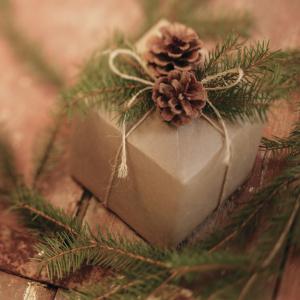 τύλιγμα δώρου με κορδόνι και κουκουνάρια για διακοσμητικά